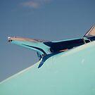 Jet Plane by thinkingoutloud