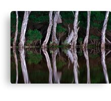 Tidal River Reflections Canvas Print