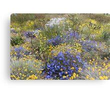 Spring wildflower colour Metal Print