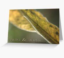 TWISTS & TURNS © Vicki Ferrari Greeting Card