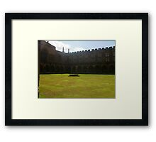 Harry potter standing place Framed Print