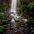 Hopetoun Falls - Otways National Park, Australia   by peterperfect