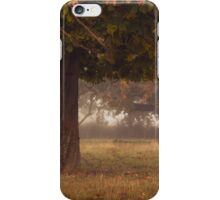 Peeping under the autumn canopy iPhone Case/Skin