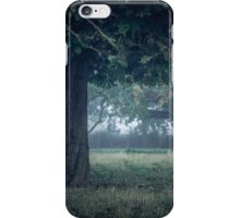 On a cool dark morning iPhone Case/Skin