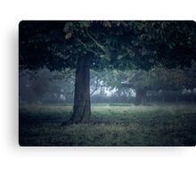 On a cool dark morning Canvas Print