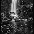 Hopetoun Falls in Mono by peterperfect