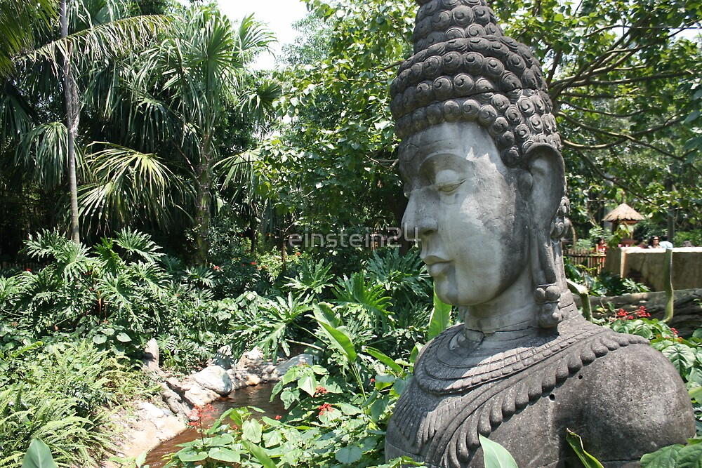 A Portrait of Buddha in Hongkong Disneyland by einstein24