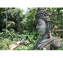 A Portrait of Buddha in Hongkong Disneyland Photographic Print