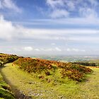 A Bright September Morning on Dartmoor by Roantrum