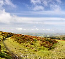 A Bright September Morning on Dartmoor by Roantrum
