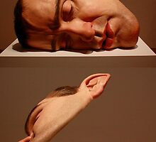 Ron Mueck - The Genius by jayded