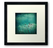Like Birds on Trees Framed Print