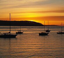 Sunrise at Batemans Bay. by shortshooter-Al