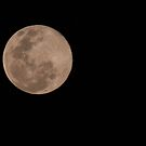 Moon Shadow by Lindsay Woolnough (Oram)