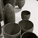 Pots of Life by Ali Brown