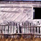 Barn by Ben Louria