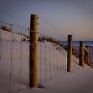 The old fenceline - Ocean Reef, Perth, Western Australia by Karen Stackpole
