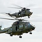 Choppers by Country  Pursuits