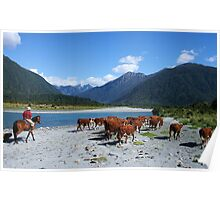 """going home""  mahitahi river, south westland, nz Poster"