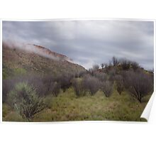 MacDonnell Ranges, Alice Springs Poster