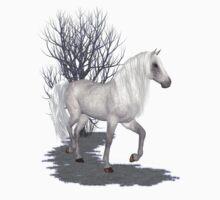 Moonglow .. appaloosa stallion by LoneAngel