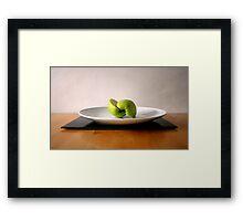 Sliced Fruit Framed Print