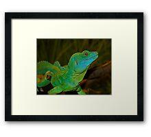 Mr. Lizard - Plumed Basilisk Lizard Framed Print