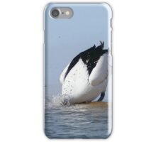 Pelican fishing 001 iPhone Case/Skin