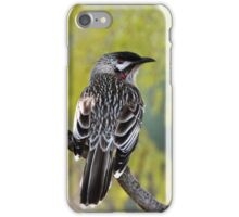 Young Adult Red Wattlebird iPhone Case/Skin