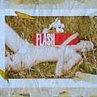 FLASH! by Caren