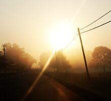 Shining through the fog by photographyjen