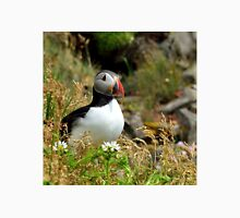 puffin resting  Unisex T-Shirt