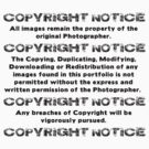 COPYRIGHT NOTICE by BYRON