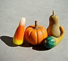 gourds by jessica hlavac