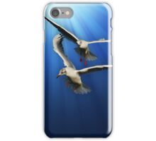 Two gulls iPhone Case/Skin