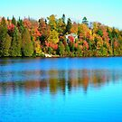Beautiful Fall ... by Juergen Weiss