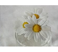 Daisies in a glass jar Photographic Print
