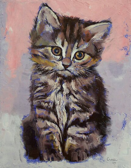 Kitten by Michael Creese