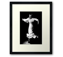Flamenco Spin Framed Print