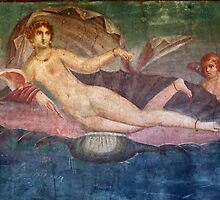 Naked Woman Venus on Clamshell Fresco Pompei by TOM HILL - Designer