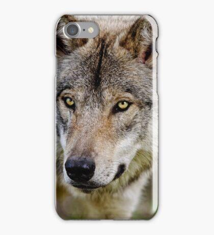 Timberwolf Portrait  iPhone Case/Skin