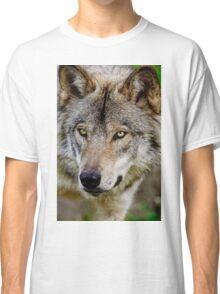 Timberwolf Portrait  Classic T-Shirt