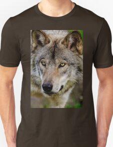 Timberwolf Portrait  T-Shirt