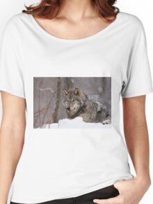 Timberwolf in Winter Women's Relaxed Fit T-Shirt