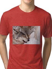 Special Moment Tri-blend T-Shirt