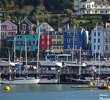 Yachts and colourful houses at Dartmouth Devon by dangler