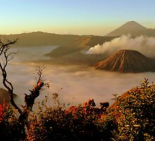 Sunrise at Mount Bromo  by Brian Bo Mei