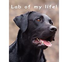 Lab of my life! Photographic Print