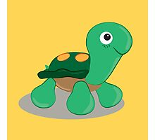 the little tortoise Photographic Print