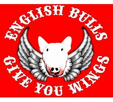 English Bulls Give you Wings Photographic Print